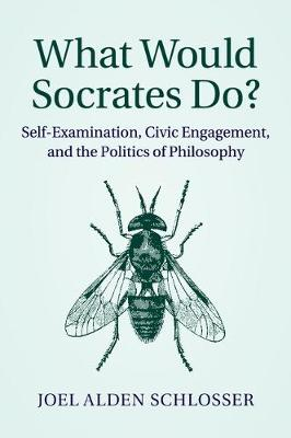 What Would Socrates Do?: Self-Examination, Civic Engagement, and the Politics of Philosophy (Paperback)