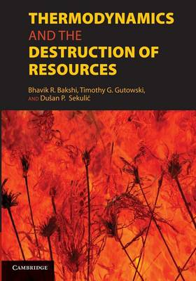 Thermodynamics and the Destruction of Resources (Paperback)
