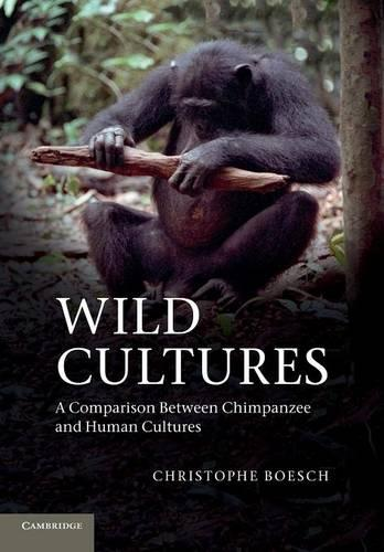 Wild Cultures: A Comparison between Chimpanzee and Human Cultures (Paperback)