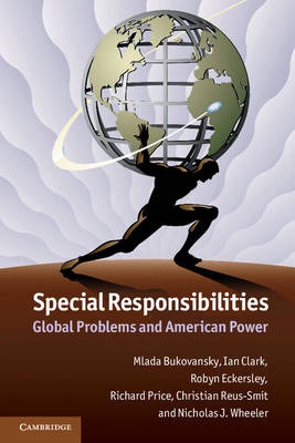 Special Responsibilities: Global Problems and American Power (Paperback)