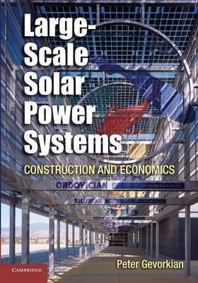 Large-Scale Solar Power Systems: Construction and Economics (Paperback)