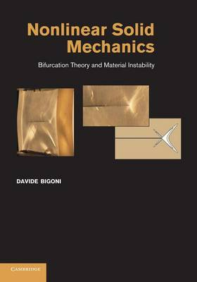 Nonlinear Solid Mechanics: Bifurcation Theory and Material Instability (Paperback)