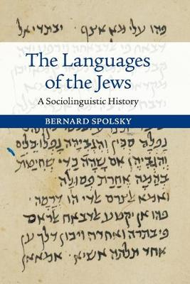 The Languages of the Jews: A Sociolinguistic History (Paperback)