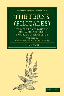 The Ferns (Filicales): Volume 3, The Leptosporangiate Ferns: Treated Comparatively with a View to their Natural Classification - Cambridge Library Collection - Botany and Horticulture (Paperback)