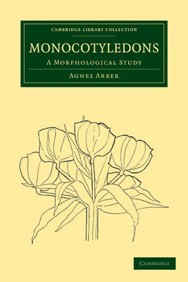 Monocotyledons: A Morphological Study - Cambridge Library Collection - Botany and Horticulture (Paperback)