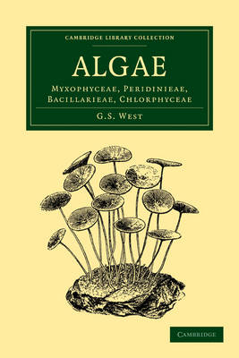 Algae: Volume 1, Myxophyceae, Peridinieae, Bacillarieae, Chlorphyceae - Cambridge Library Collection - Botany and Horticulture (Paperback)