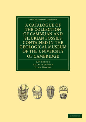 A Catalogue of the Collection of Cambrian and Silurian Fossils Contained in the Geological Museum of the University of Cambridge - Cambridge Library Collection - Earth Science (Paperback)