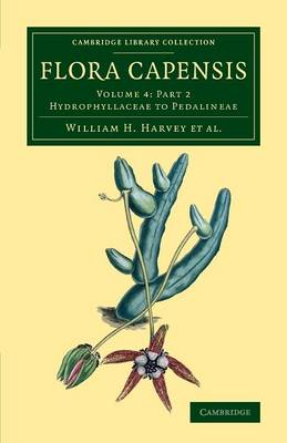 Flora Capensis: Being a Systematic Description of the Plants of the Cape Colony, Caffraria and Port Natal, and Neighbouring Territories - Flora Capensis 7 Volume Set in 10 Pieces Volume 4 (Paperback)