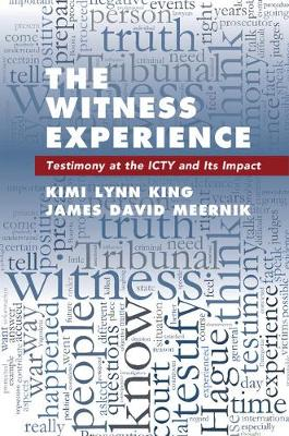 The Witness Experience: Testimony at the ICTY and Its Impact (Hardback)