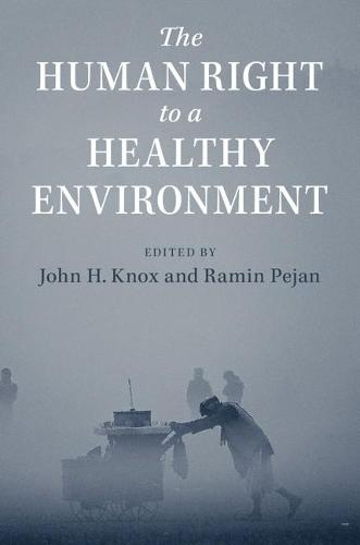 The Human Right to a Healthy Environment (Paperback)