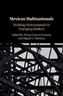 Mexican Multinationals: Building Multinationals in Emerging Markets (Hardback)