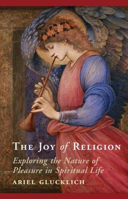 The Joy of Religion: Exploring the Nature of Pleasure in Spiritual Life (Hardback)