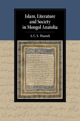 Cambridge Studies in Islamic Civilization: Islam, Literature and Society in Mongol Anatolia (Hardback)