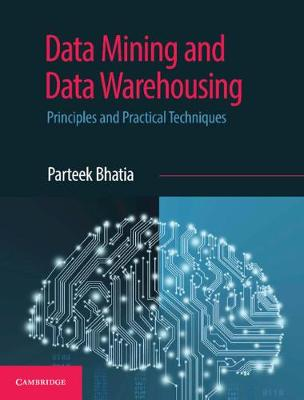 Data Mining and Data Warehousing: Principles and Practical Techniques (Paperback)