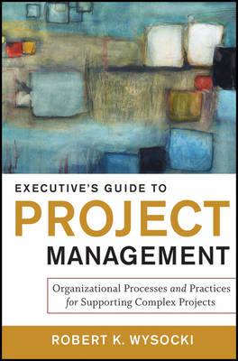 Executive's Guide to Project Management: Organizational Processes and Practices for Supporting Complex Projects (Hardback)