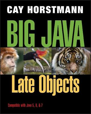 Big Java: Late Objects (Paperback)