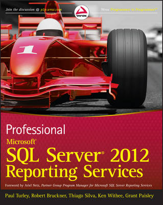 Professional Microsoft SQL Server 2012 Reporting Services (Paperback)