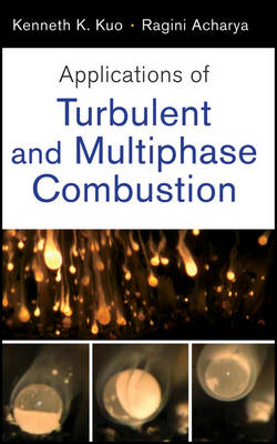 Applications of Turbulent and Multi-Phase Combustion (Hardback)