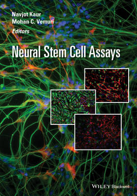 Neural Stem Cell Assays (Hardback)