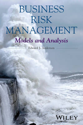 Business Risk Management: Models and Analysis (Hardback)