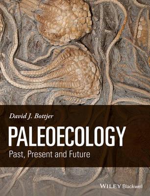 Paleoecology: Past, Present and Future (Hardback)