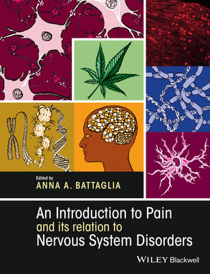 An Introduction to Pain and its relation to Nervous System Disorders (Paperback)