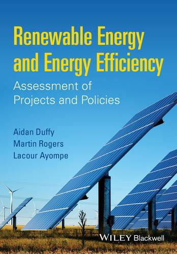 Renewable Energy and Energy Efficiency: Assessment of Projects and Policies (Paperback)