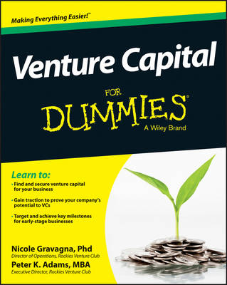 Venture Capital For Dummies (Paperback)