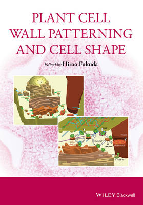 Plant Cell Wall Patterning and Cell Shape (Hardback)