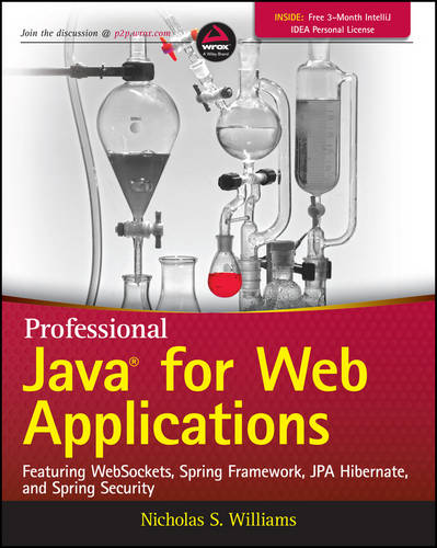 Professional Java for Web Applications (Paperback)