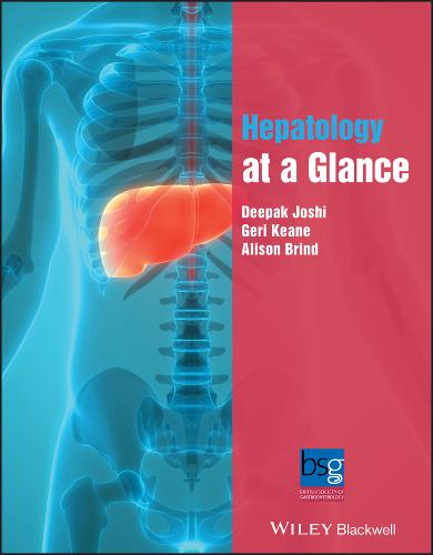 Hepatology at a Glance - At a Glance (Paperback)