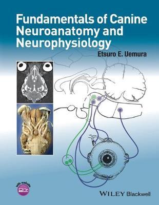 Fundamentals of Canine Neuroanatomy and Neurophysiology (Paperback)