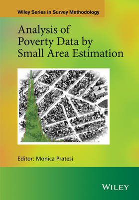 Analysis of Poverty Data by Small Area Estimation - Wiley Series in Survey Methodology (Hardback)
