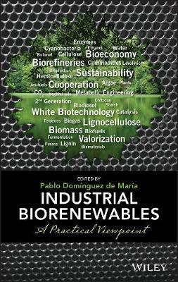 Industrial Biorenewables: A Practical Viewpoint (Hardback)