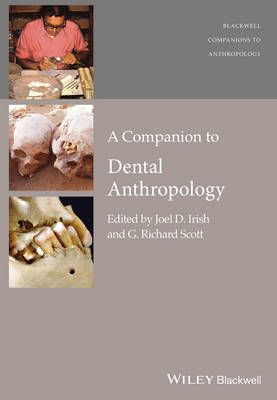 A Companion to Dental Anthropology - Wiley Blackwell Companions to Anthropology (Hardback)