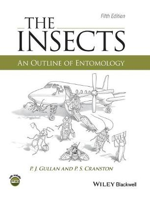 The Insects: An Outline of Entomology (Hardback)