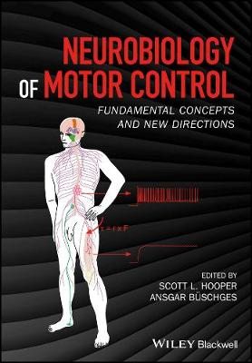 Neurobiology of Motor Control: Fundamental Concepts and New Directions (Hardback)