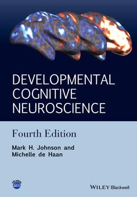 Developmental Cognitive Neuroscience: An Introduction (Hardback)