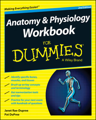 Anatomy and Physiology Workbook For Dummies (Paperback)