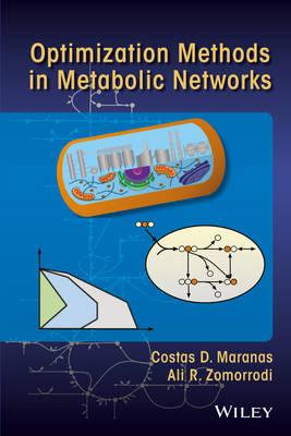 Optimization Methods in Metabolic Networks (Hardback)