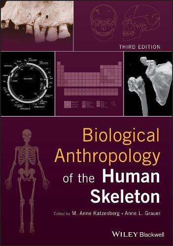 Biological Anthropology of the Human Skeleton (Hardback)