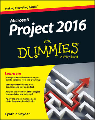 Project 2016 For Dummies (Paperback)