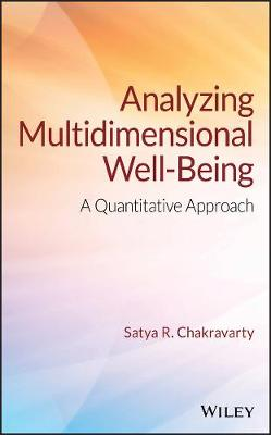 Analyzing Multidimensional Well-Being: A Quantitative Approach (Hardback)