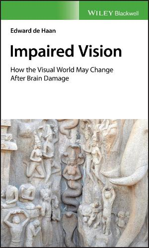 Impaired Vision: How the Visual World May Change after Brain Damage (Hardback)