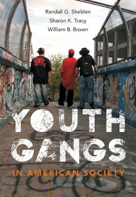 Youth Gangs in American Society (Paperback)