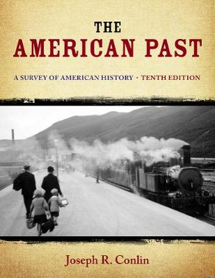 The American Past: A Survey of American History (Hardback)