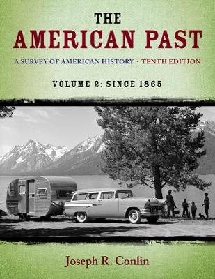 The American Past: A Survey of American History, Volume II: Since 1865 (Paperback)