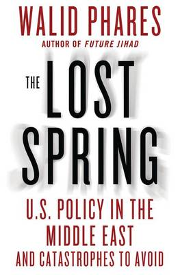 The Lost Spring: U.S. Policy in the Middle East and Catastrophes to Avoid (Hardback)