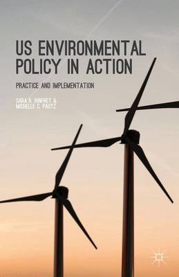 US Environmental Policy in Action: Practice and Implementation (Hardback)
