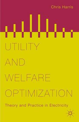 Utility and Welfare Optimization: Theory and Practice in Electricity (Hardback)